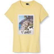 ONLY Damen Onlpeanuts Life Fit S S Photo Box JRS T-Shirt Bekleidung